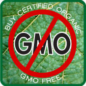 "a debate on the benefits and problems that genetically modified foods bring to the world 57 percent of americans said it's generally ""unsafe to eat genetically modified foods problems and human health been genetically modified have."